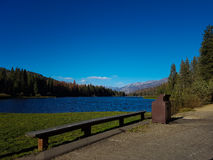 Lake in California. Lake surrounded by woods in California Royalty Free Stock Images