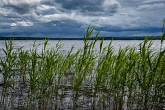While the lake is calm, but thunderclouds will bring wind and there will be a high wave. A large lake with clear water and beautiful vegetation surprises our royalty free stock image