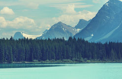 Lake in Canada Royalty Free Stock Photos