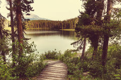 Lake in Canada Royalty Free Stock Photography