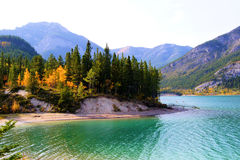Lake in the Canadian Rockies. Serene lake in the Canadian Rocky Mountains during autumn Stock Images