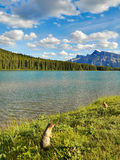 Lake Canadian Rockies Landscape Royalty Free Stock Photos