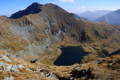 Lake Capra. Trip in Fagaras Mountains, in september Stock Images