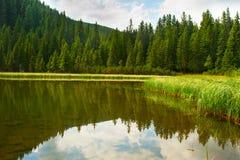 Lake in Carpathians mountains Stock Image