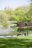 Lake in Central Park in Spring with Dakota Apartments in background, New York City, New York Stock Photos