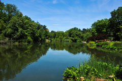 Lake in the Central Park Royalty Free Stock Photo