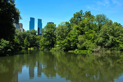 Lake in the Central Park Stock Photography