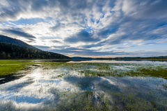 Lake Cerknica. In the afternoon. Reflections on the surface of the lake Royalty Free Stock Photo