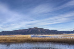 Lake Cerknica with mountain Slivnica, Slovenia Royalty Free Stock Photo