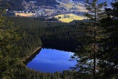 Lake Certovo jezero, Winter landscape, Železná Ruda, Czech Republic Stock Photos