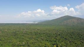 Lake Chamo, Ethiopia, Africa. Nechisar National Park with Lake Chamo, Ethiopia, Africa Royalty Free Stock Image