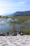 Lake Chapala Boats Birds Pier and Mountains Stock Photos