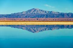 Lake Chaxa Reflection Royalty Free Stock Photography