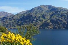 Lake Chelan, Washington royaltyfri foto