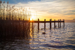 Lake Chiemsee in morning light Royalty Free Stock Photography