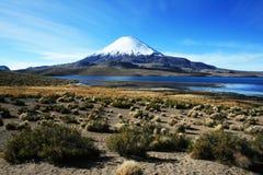 Lake chungara. The incredible landscape of lake chungara at border between chile and bolivia Royalty Free Stock Photo