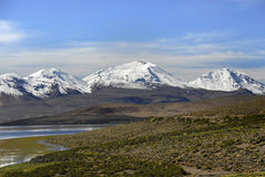 Lake Chungara in Lauca National Park Royalty Free Stock Images