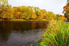 Lake in the city park in autumn Stock Image