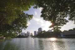 The lake in the city royalty free stock photography