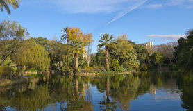 Lake Ciutadella Park Stock Photos
