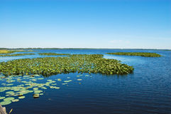 Lake with Clear Blue Sky Stock Images
