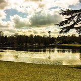 Lake on a cloudy spring morning Royalty Free Stock Photography