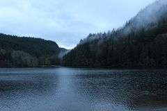 Lake coast covered with evergreen forest  Royalty Free Stock Photography
