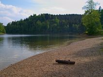 Lake coast with a log. The lake beach with log on it Royalty Free Stock Photo