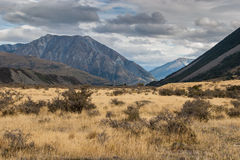 Lake Coleridge High Country Stock Images