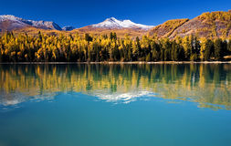 Lake in the colorful autumn Stock Images