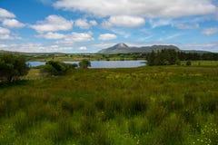Lake in colorful meadow, Republic of Ireland. Connemara stock photos