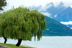 Lake Como (Italy) summer cloudy view Royalty Free Stock Images