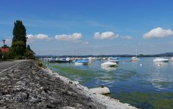 Lake of constance Iznang Germany Bodensee port Royalty Free Stock Photo