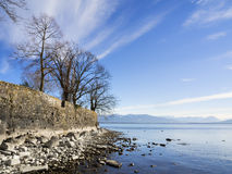 Lake Constance with rocks and trees Stock Photography