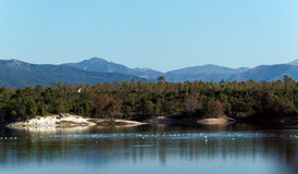 Lake in  Corsica island Royalty Free Stock Photography
