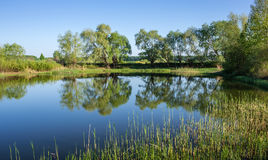 Lake in the countryside Royalty Free Stock Photography
