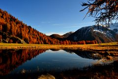 Lake covel 2. Reflections in the lake covel Stock Image