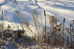 The lake is covered with ice. Royalty Free Stock Images