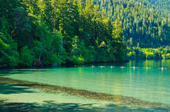 Lake Crescent, Olympic National Park Royalty Free Stock Photography