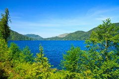 Lake Crescent, Olympic National Park, Washington Royalty Free Stock Photos