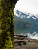Lake Crescent in Olympic National Park in winter Stock Images