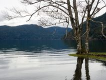Lake Crescent in Olympic National Park in winter Stock Photos