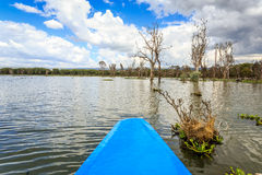 Lake cruise by blue canoe, Naivasha, Kenya Stock Image