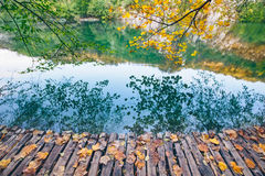 Lake with crystal clear water in the sunshine. Plitvice lakes Stock Image