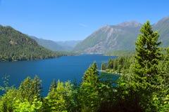 Lake Cushman Cove in Summer royalty free stock image