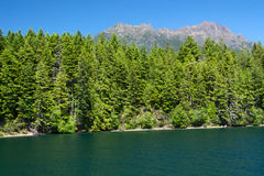 Lake Cushman and Mount Elinor in Summer stock images