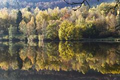 Lake at dawn at Kronenburg. In the early morning the River Kyll is silent. The reflexion of the trees in the water is beautiful Royalty Free Stock Photography