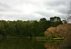 Lake daylesford Royalty Free Stock Image