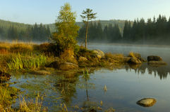 Lake in Deep Forest Royalty Free Stock Photography