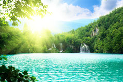 Lake in deep forest Royalty Free Stock Photos